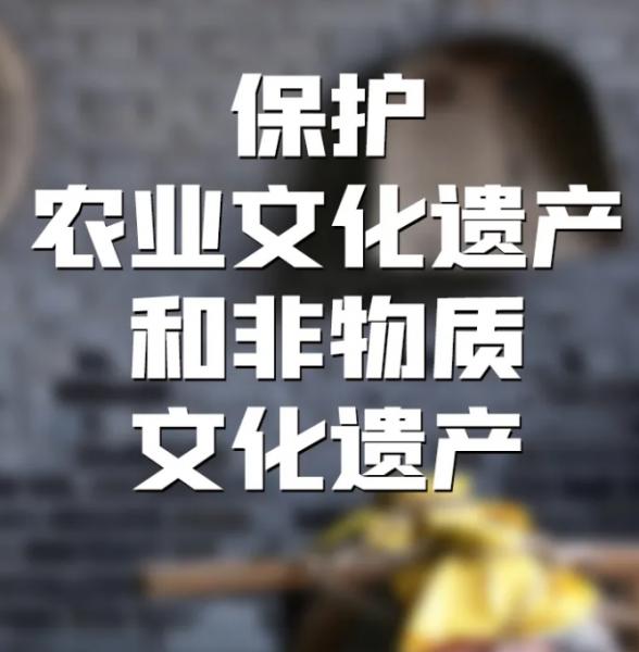 《中华人民共和国乡村振兴促进法》于今日起施行插图5
