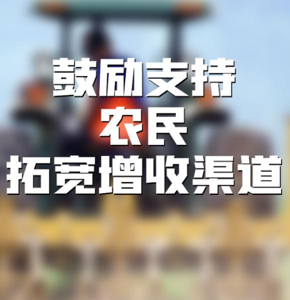 《中华人民共和国乡村振兴促进法》于今日起施行插图4