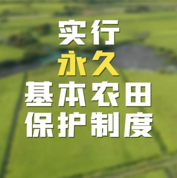 《中华人民共和国乡村振兴促进法》于今日起施行插图3