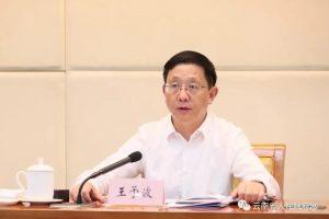 云南省委副书记、省长王予波:让市场主体多起来大起来活起来强起来缩略图