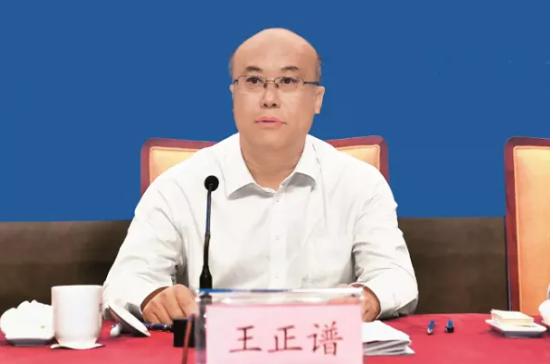 """王正谱在全国""""万企兴万村""""行动启动大会上的讲话插图"""